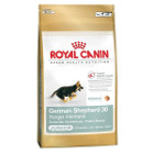 royal-canin-berger-allemand-junior