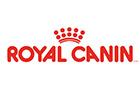 Chat - Royal Canin